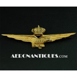 Brevet Pilote Italien...